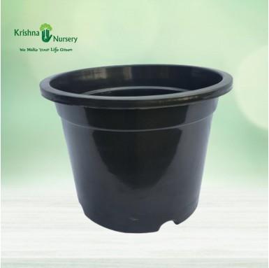 """12"""" Black Pot"""