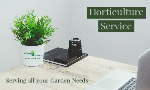 horticulture-services